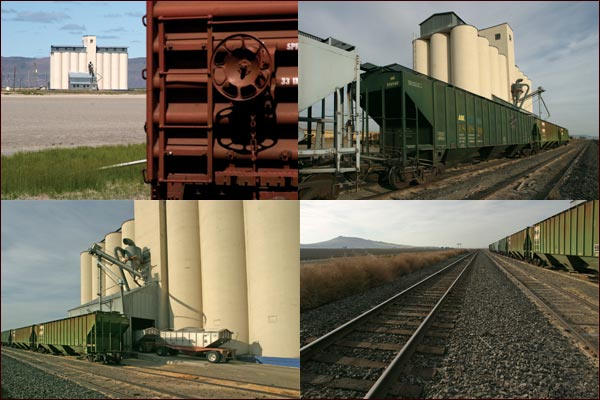 Grain silos by railroad trains, box cars and trucks, tule lake basin, tulelake ca.  photo by anders tomlinson
