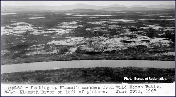 looking north across marshes at klamath falls, june 6-30-1907.