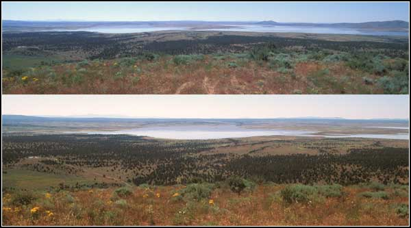 views of clearlake drom the north and west,  modoc county, photos by anders tomlinson