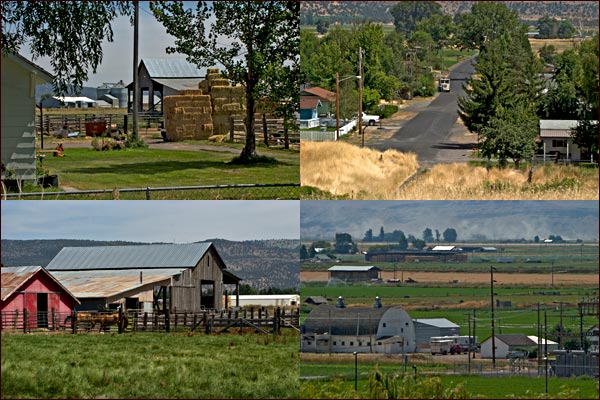 malin oregon farm scenes.  photos by anders tomlinson.
