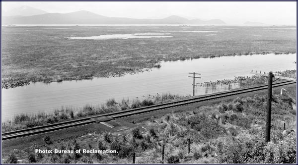 bureau reclamation photo of railroad tracks built along lower klamath lake.
