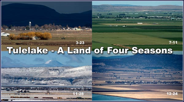 tulelake california seen during four season in 2004 through 205.  photos by anders tomlinson.