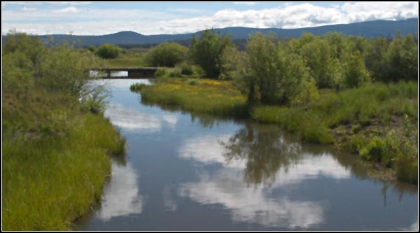 williamson river, klamath national wildlife refuge. klamath county.  photo by anders tomlinson.