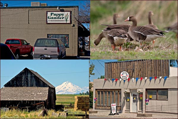 scenes of downtown merrill oregon, 2004, including view of mt. shasta and barn photos by anders tomlinson