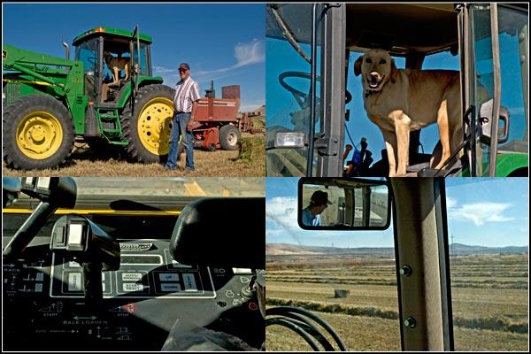 Cab scenes during a tule lake basin alfalfa harvest.  tulelake. california.  photos by anders tomlinson