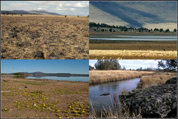 scenes, including mowitz creek, of clear lake national wildlife refuge, modoc county california, photos by anders tomlinson