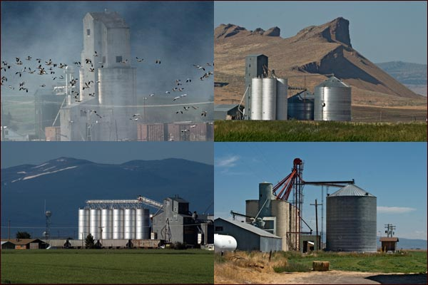 Grain elevators and silos across the tule lake basin, tulelake, ca. photos by anders tomlinson.