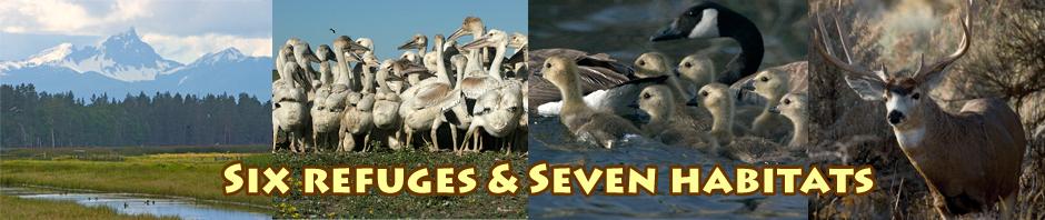 klamath basin national wildlife Refuge Complex videos header