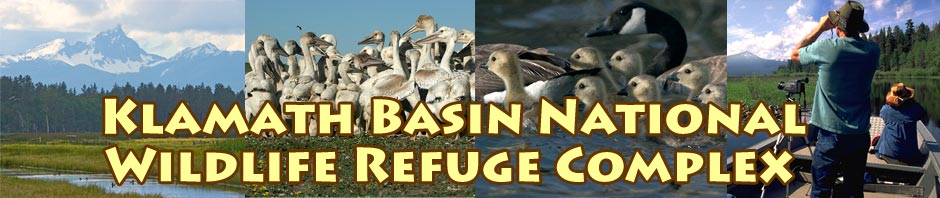 Klamath Basin National Wildlife Refuge Complex videos by Anders Tomlinson.