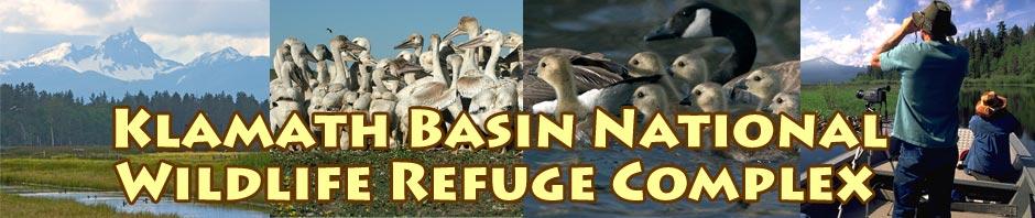 Klamath Basin National Wildlife Refuge Complex videos by Anders Tomlinson.