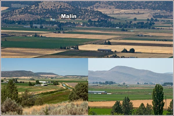 malin oregon farm scenes including view of malin oregon from tulelake california.  photo by anders tomlinson