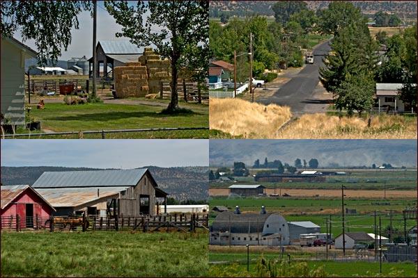malin oregon farm scenes.  photos by anders tomlinson.