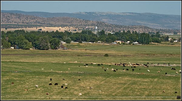 merrill, oregon as seen from the west.  photo by anders tomlinson.  2003.