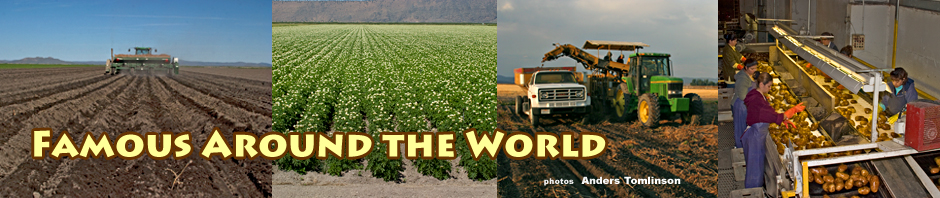 tule lake basin potatoes. photos by anders tomlinson.