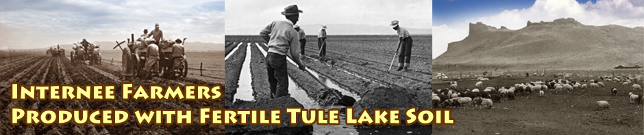 tule lake internment - segregation center farming, jimi yamaichi.