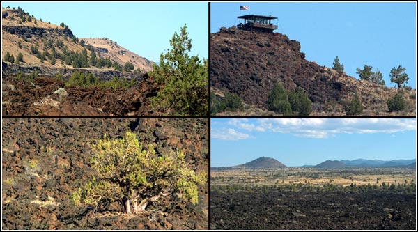 The oldest flow at the Lava Beds is 450,000 years  and the youngest is 1,110 plus or minus 60 years. There are over 30 separate lava flows exposed in the park from Medicine Lake volcano eruption. lava bedds national monument, tuelake, ca.  photo by anders tomlinson 8-23-2005
