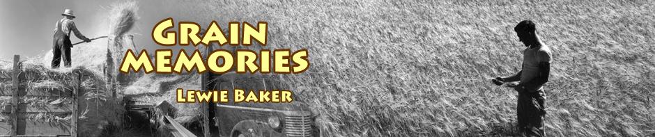 grain farming in tulelake during world war 11