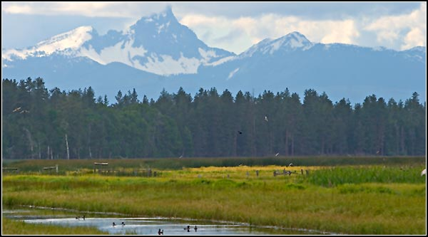 mt, thielsen is seen to the west of klamath national wildlife refuge, klamath county.  photo by anders tomlinson.