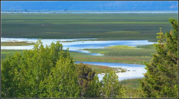overlooking upper klamath national wildlife refuge from tomahwak hill.  rocky point, oregon.  photo by anders tomlinson