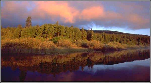 recreation creek, National forest, upper klamath national wildlife refuge, rocky point, oregon.  photo by anders tomlinson