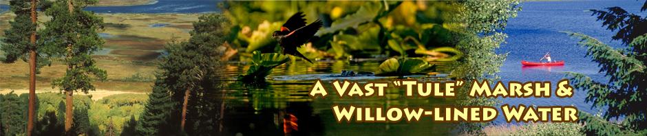 upper klamath national wildlife refuge header
