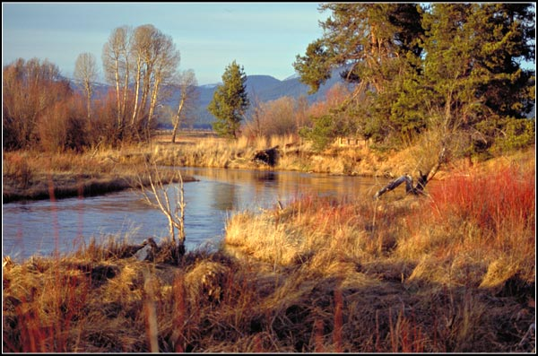 wood river day use park, wood river valley, klamath county, oregon. photo by anders tomlinson