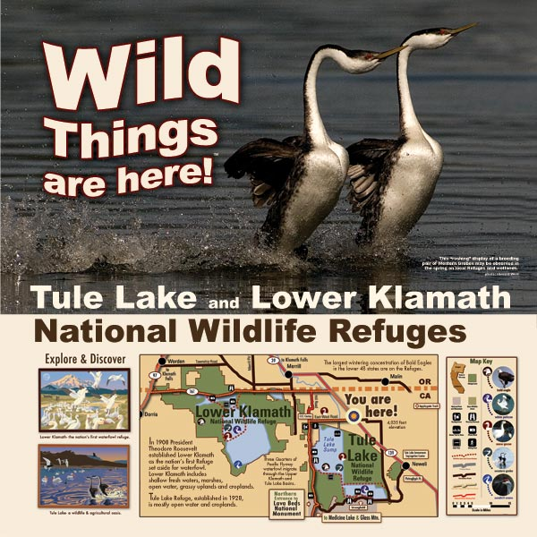 tule lake and lower klamath refuge display at the tulelake, california rest stop. designed by anders tomlinson