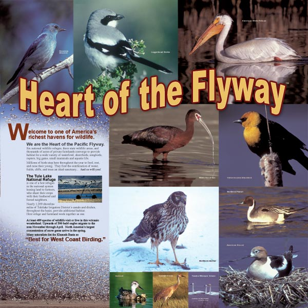 heart of the pacific flyway display at the tulelake, california rest stop.