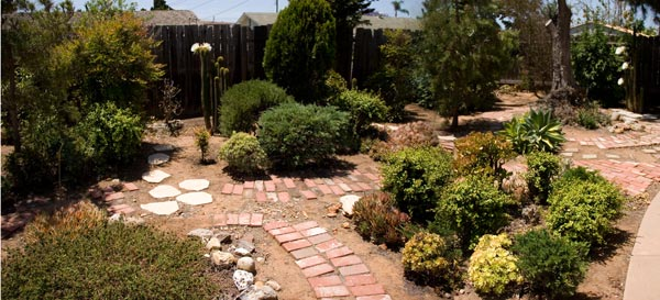 Garden on June 1, 2014. san diego ca, photo by anders tomlinson,
