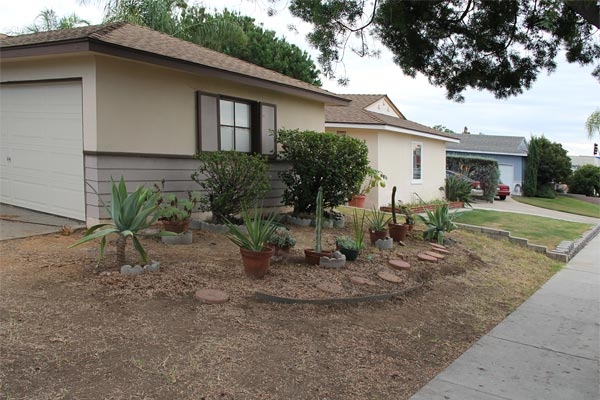 denver clay is creating a southwest - low-water-usuage garden in san diego, ca.  photo by anders tomlinson.