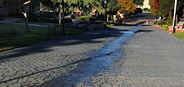 water flowing down a street in san diego old town park. water is coming from a california state park sprinkler system,. photo by anders tomlinson. december 2013
