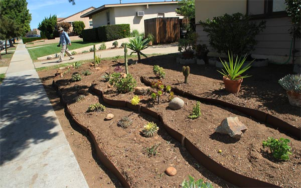 allied gardens, san diego, ca. house. 03-13-15. photo by anders tomlinson. story of building a smart water yard. multi-media project: film by anders tomlinson. garden and music by SonicAtomics.
