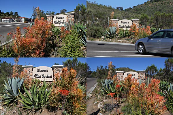 welcome sign to allied gardens on waring near highway 8allied gardens, san diego, ca. house. 03-13-15. photo by anders tomlinson. story of building a smart water yard. multi-media project: film by anders tomlinson. garden and music by SonicAtomics.