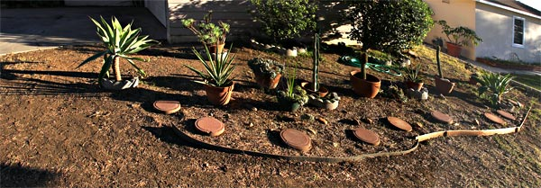 allied gardens, san diego, ca. house. 03-13-14. photo by anders tomlinson. story of building a smart water yard. multi-media project: film by anders tomlinson. garden and music by SonicAtomics.