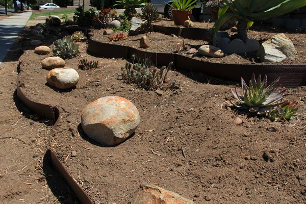 rocks, allied gardens cactus and succulentssmart water garden, a mult-media project by anders tomlinson and denver clay, film by anders tomlinson, garden by denver clay, mucis by sonicatomics, sonic succulents, allied gardens, sand diego, ca. photos by anders tomlinson. 2015