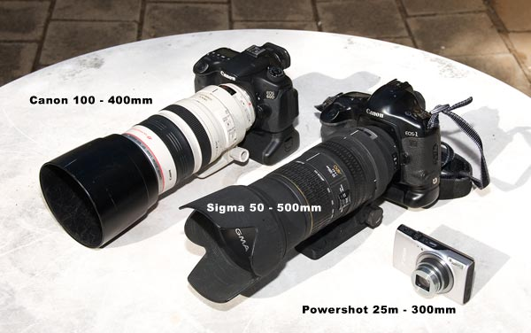Canon 100 -400mm l, Sigma 50 - 500mm and Canon Powershot 350 lenses used for test with Opossum in Serra Mesa, Ca. Photo by Anders Tomlinson.