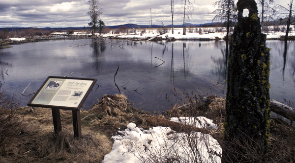 Mare's Eggs Springs, Rocky Point, Klamath County, Oregon.  Photo by Anders Tomlinson,  1997