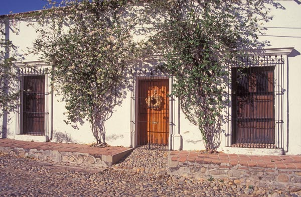 """Calle 6 Toluca, Alamos, Sonora, Mexico. February 2017. Photo by Anders Tomlinson"""""""